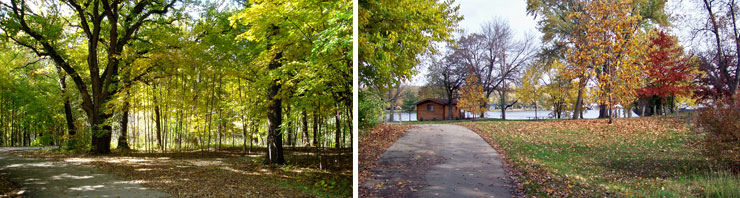 Illini State Park Collage